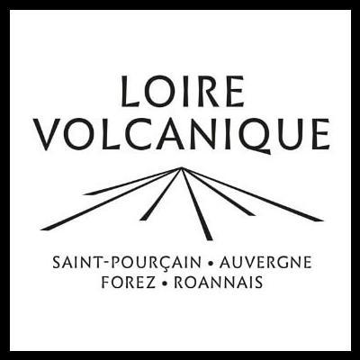 Loire Volcanique : nouveau séisme dans la viticulture française