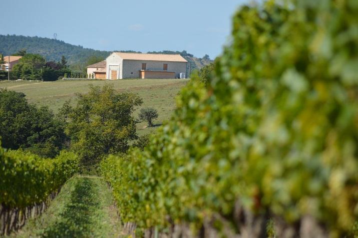 Domaine Arsac Vins bio d'Ardèche
