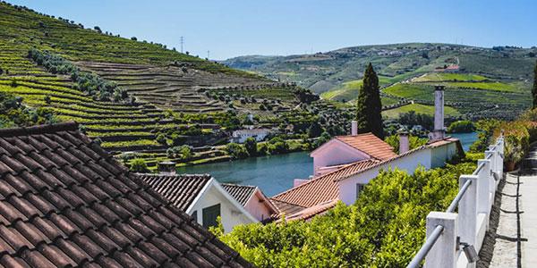 Quinta de la Rosa les coteaux Vallée du Douro